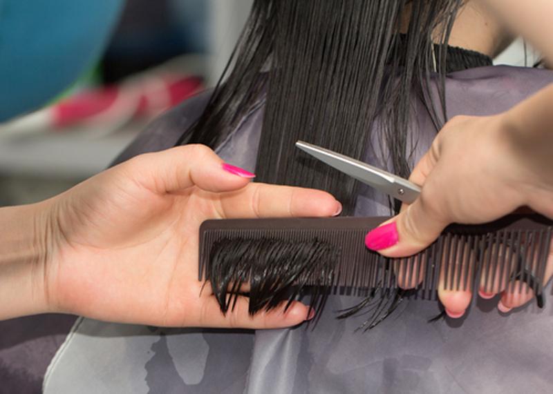 hair_being_trimmed_.jpg